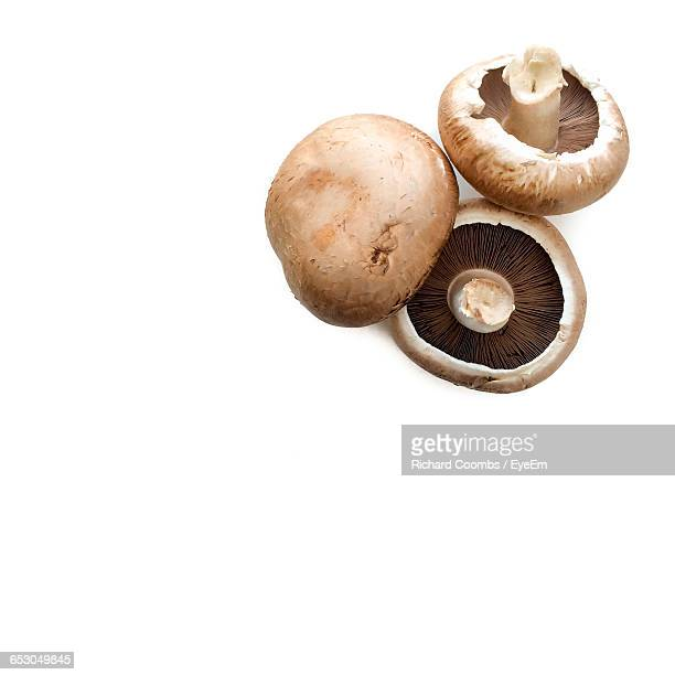 Close-Up Of Portobello Mushrooms On White Background