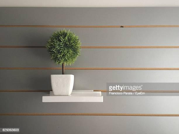 Close-Up Of Potted Plant On Shelf Against Gray Wall