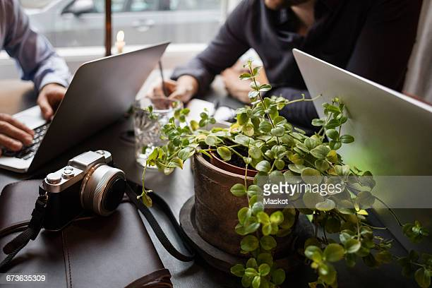Close-up of potted plants and camera with businessmen working in creative office