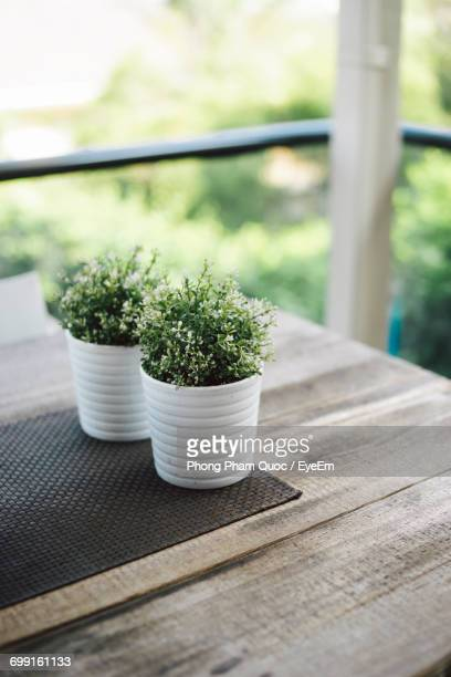 Close-Up Of Potted Plants On Wooden Table At Balcony