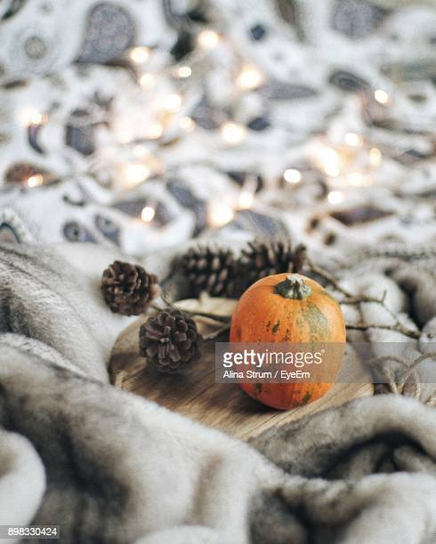 close-up of pumpkin and pine cones on blanket - alina stock pictures, royalty-free photos & images