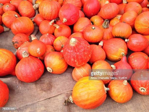 Close-Up Of Pumpkin For Sale
