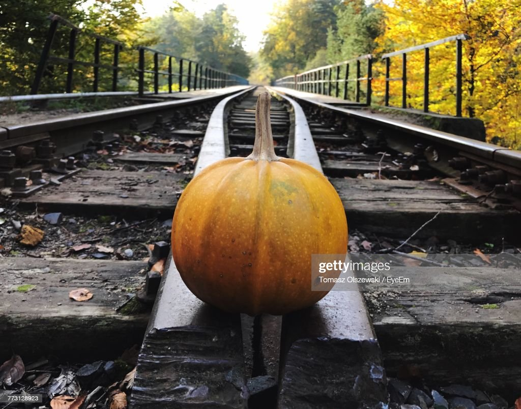 Close-Up Of Pumpkin On Railroad Track Against Trees : Photo