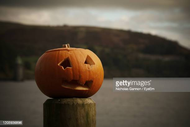 close-up of pumpkin on wooden post during halloween - lake vyrnwy stock pictures, royalty-free photos & images