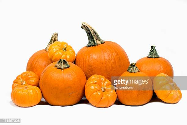 Close-up of pumpkins isolated on white background
