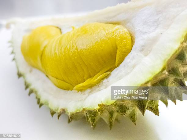 Close-Up of pure breed 'Musang King' Durian