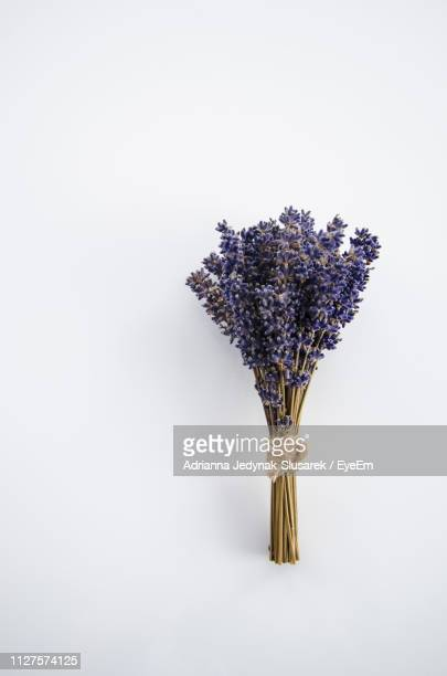 Close-Up Of Purple Flower Bouquet Against White Background