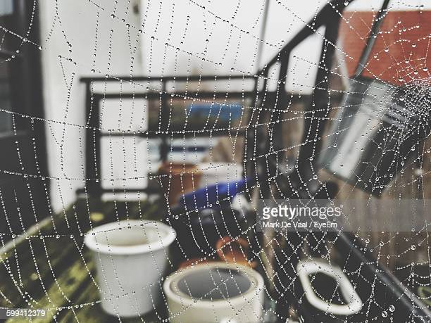 Close-Up Of Raindrops On Spider Web At Home