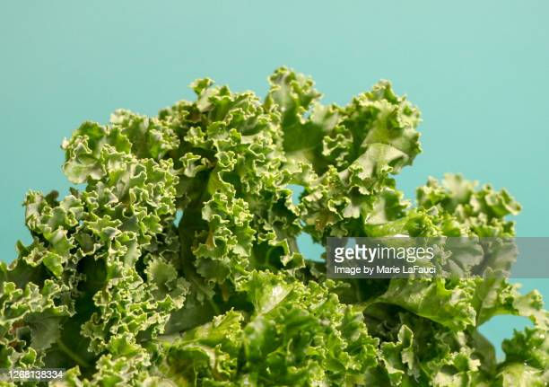close-up of raw kale - green salad stock pictures, royalty-free photos & images