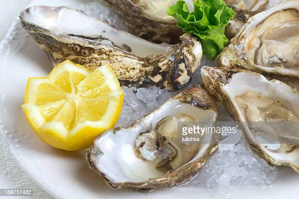 close-up of raw oysters and lemon wedge served on plate - oyster shell stock photos and pictures