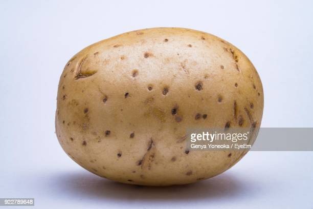 close-up of raw potato against white background - raw potato stock pictures, royalty-free photos & images