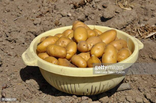 Close-Up Of Raw Potatoes In Basket On Mud