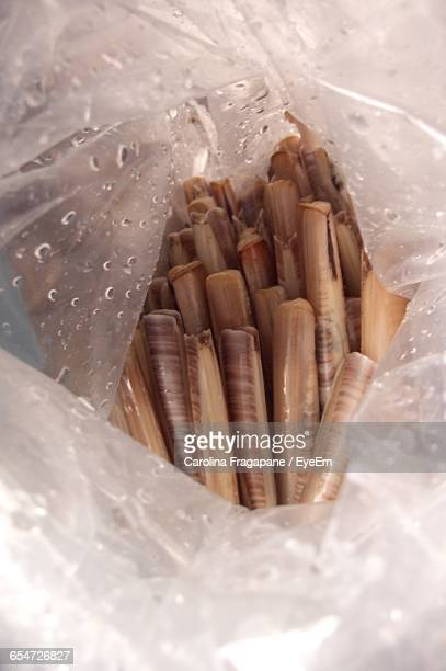 close-up of razor clams in plastic bag - carolina fragapane stock pictures, royalty-free photos & images