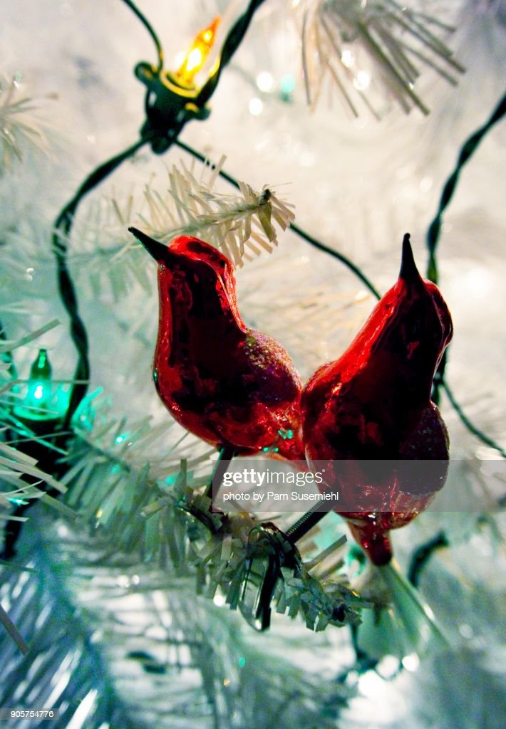 close up of red bird ornaments on a white artificial christmas tree stock - Red Bird Christmas Tree Decorations
