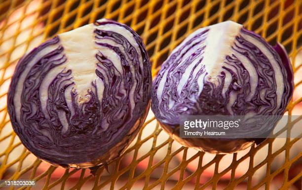 close-up of red cabbage halves on a yellow metal table - timothy hearsum photos et images de collection