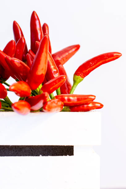 Close-up of red chili peppers on white background,Italia,Italy
