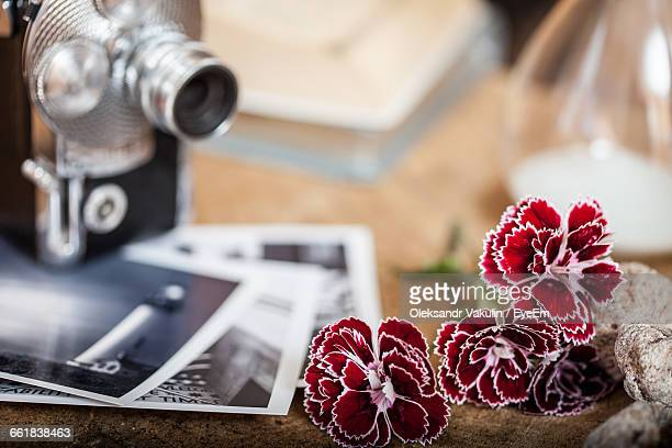 Close-Up Of Red Dianthus Flowers By Vintage Camera