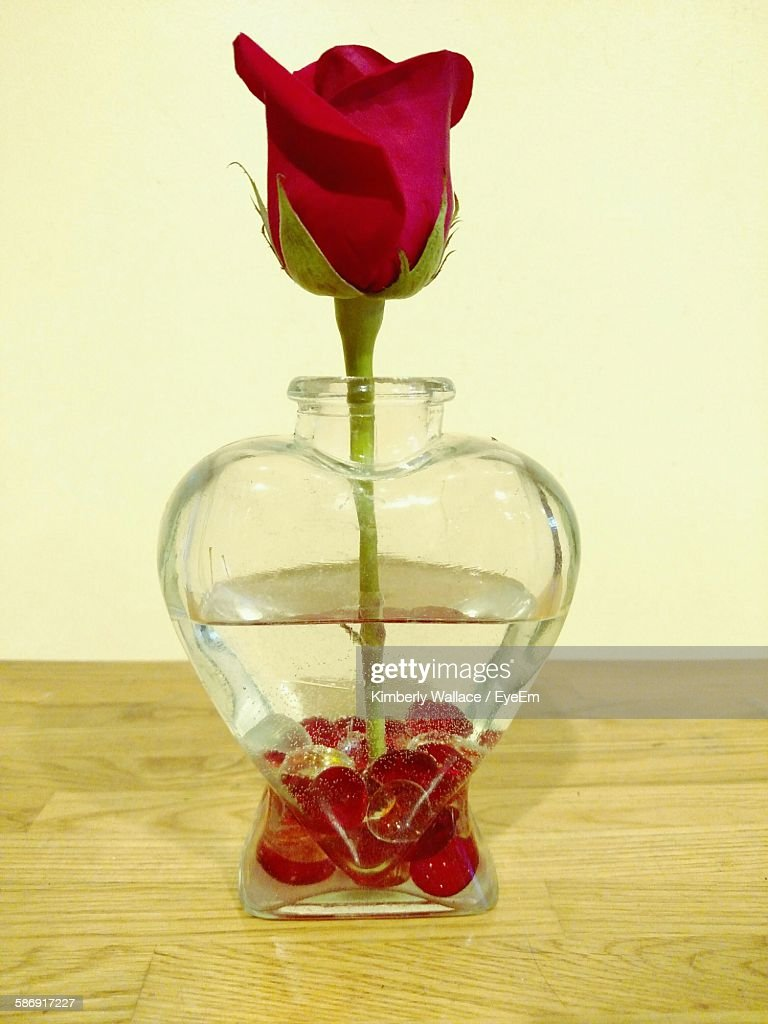 Closeup of red rose in heart shaped vase stock photo getty images close up of red rose in heart shaped vase reviewsmspy