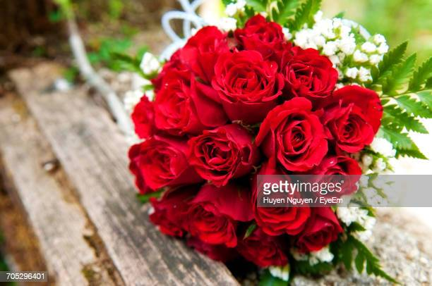 close-up of red rose - red roses stock pictures, royalty-free photos & images