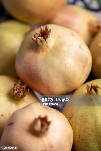 closeup of ripe, yellow pomegranates - dorte fjalland stock pictures, royalty-free photos & images
