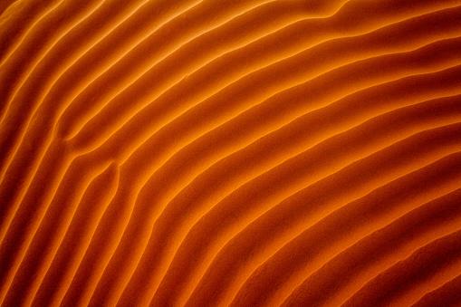 Close-up of ripples in the sand, Riyadh, Saudi Arabia - gettyimageskorea