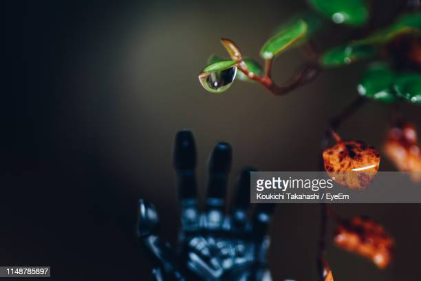 Close-Up Of Robot Hand And Plant