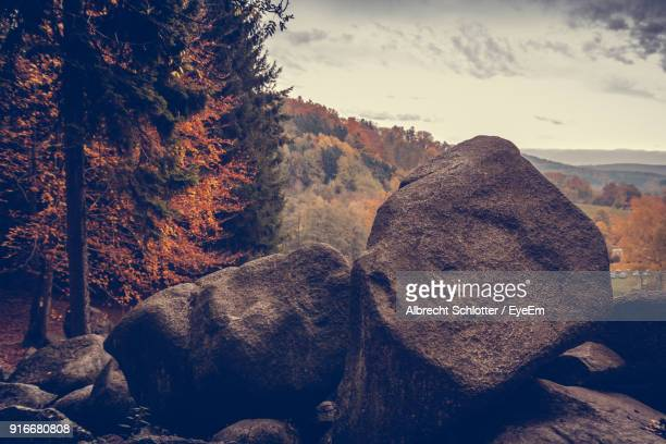 close-up of rocks on mountain against sky - albrecht schlotter stock photos and pictures