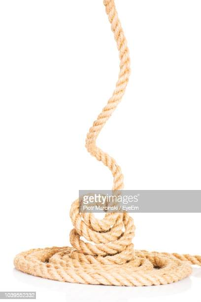 close-up of rope on white background - cuerda fotografías e imágenes de stock