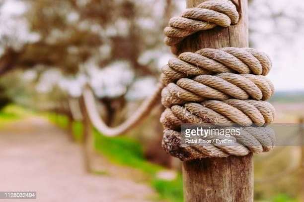 close-up of rope tied - twisted stock pictures, royalty-free photos & images