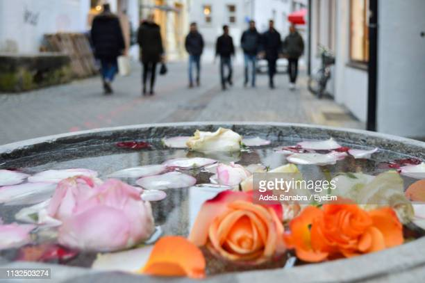 Close-Up Of Roses Floating On Water In City