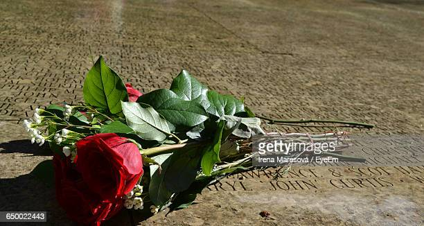 Close-Up Of Roses On Grave Surface