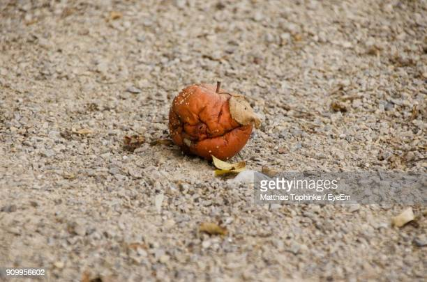 Close-Up Of Rotten Fruit On Sand