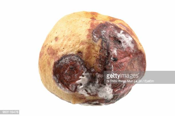 close-up of rotten fruit over white background - rot stock pictures, royalty-free photos & images