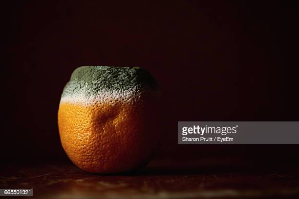 Close-Up Of Rotten Orange On Table
