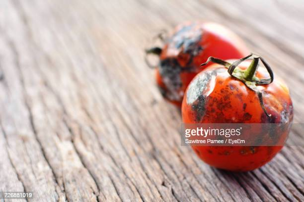 close-up of rotten tomatoes on wooden table - rot stock photos and pictures