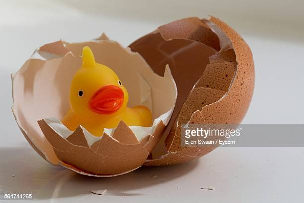 Close-Up Of Rubber Duck In Broken Eggshells Against White Background