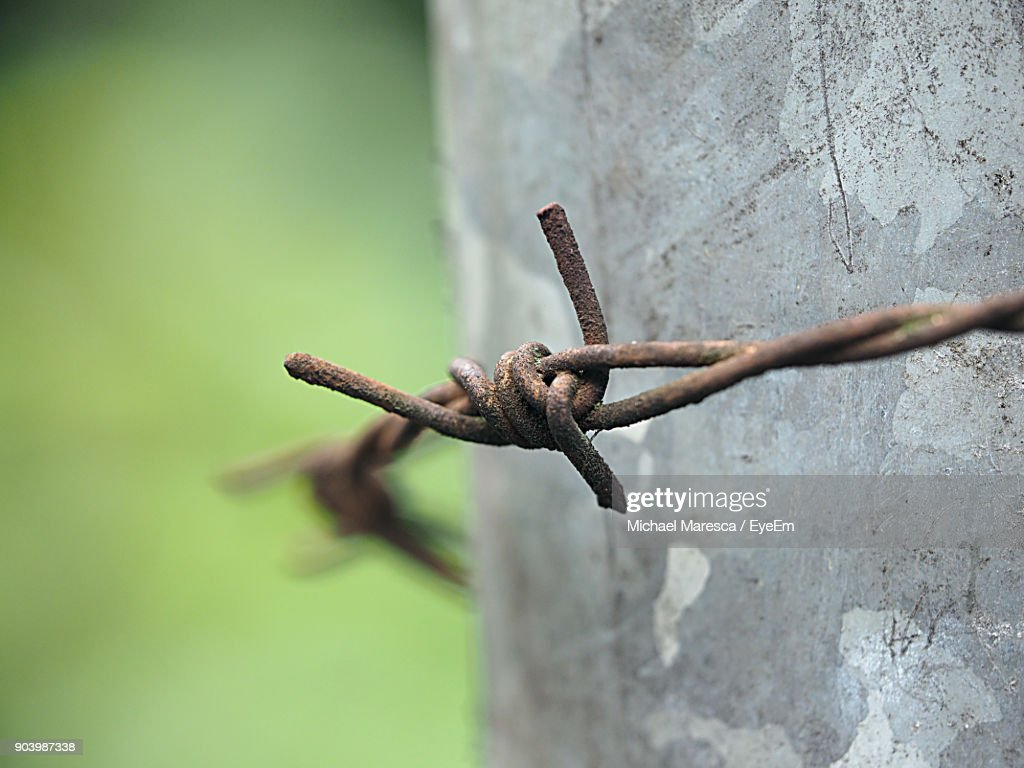 Closeup Of Rusty Barbed Wire On Old Wall Stock Photo   Getty Images