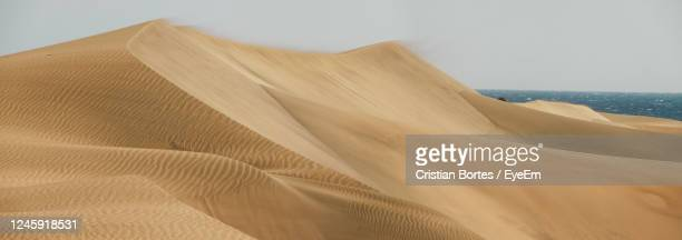 close-up of sand at beach against sky - bortes stock pictures, royalty-free photos & images