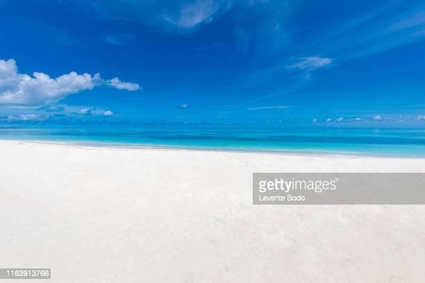 closeup of sand on beach and blue summer sky. sea view from tropical beach with sunny sky. - paisajes de bahamas fotografías e imágenes de stock