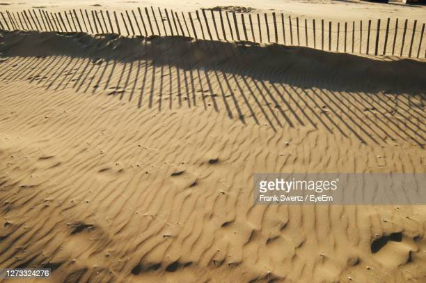 close-up of sand - frank swertz stock pictures, royalty-free photos & images