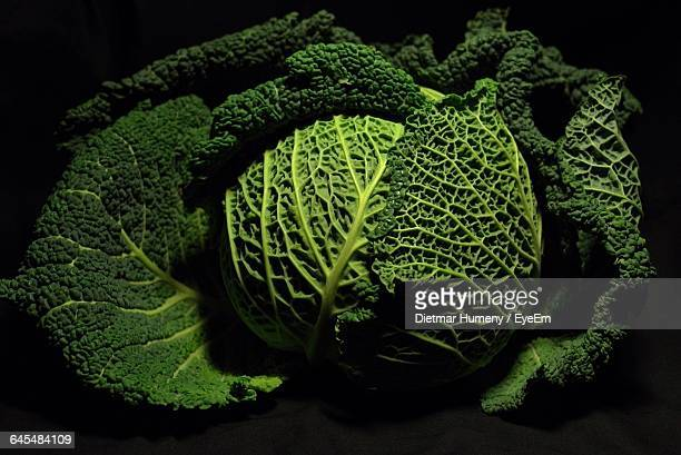Close-Up Of Savoy Cabbage Against Black Background