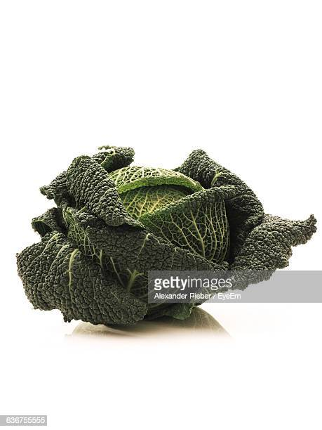 Close-Up Of Savoy Cabbage On White Background