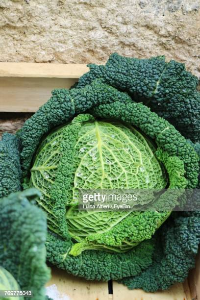 Close-Up Of Savoy Cabbage