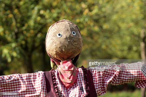 close-up of scarecrow against trees - scarecrow faces stock photos and pictures