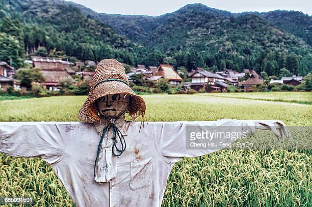 close-up of scarecrow on farm field - scarecrow agricultural equipment stock photos and pictures