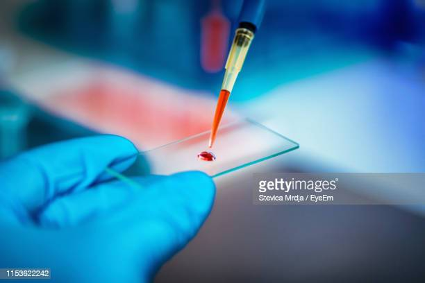 close-up of scientist working in laboratory - pipette stock pictures, royalty-free photos & images