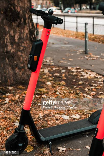 close-up of scooter on footpath by tree - sharing economy stock pictures, royalty-free photos & images