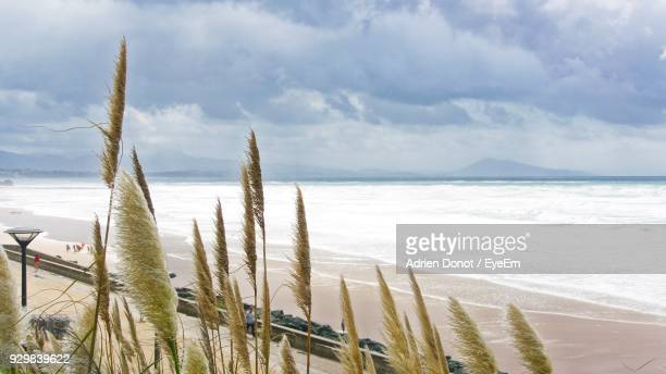 close-up of sea against sky - biarritz stock pictures, royalty-free photos & images