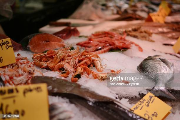 close-up of seafood on crushed ice for sale in market - crushed ice stock pictures, royalty-free photos & images