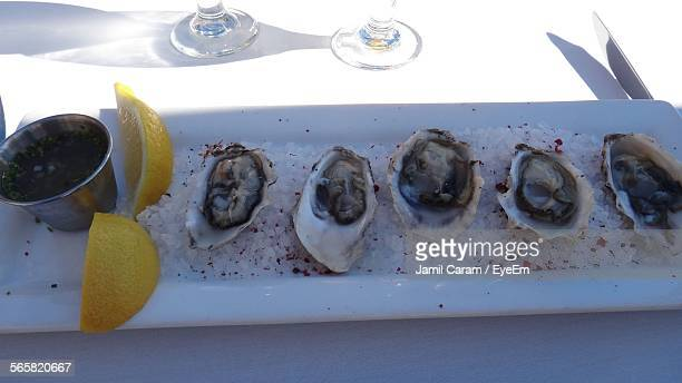 Close-Up Of Served Oysters On Plate